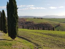 Campagna della Toscana fotografie stock