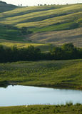 Campagna della TOSCANA e poco lago Fotografia Stock