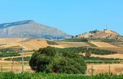 Campagna di agricoltura di estate della Sicilia, Italia Immagine Stock