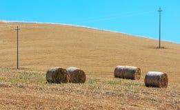 Campagna di agricoltura di estate della Sicilia, Italia Fotografia Stock