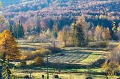 Campagna di agricoltura di estate della Sicilia, Italia Fotografie Stock Libere da Diritti