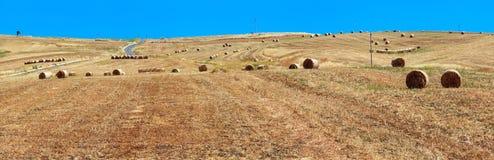Campagna di agricoltura di estate della Sicilia, Italia Fotografie Stock