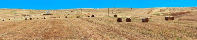 Campagna di agricoltura di estate della Sicilia, Italia Immagine Stock Libera da Diritti