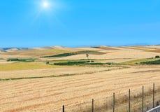 Campagna di agricoltura di estate della Sicilia, Italia Immagini Stock