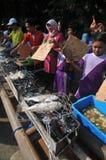 Campagna di cibo del pesce Fotografia Stock Libera da Diritti