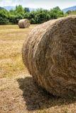 Campagna di Hay Bales Bale Round Field Fotografia Stock Libera da Diritti