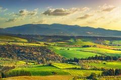 Campagna di Maremma, Rolling Hills, alberi e foresta di Magona al tramonto Bibbona, Toscana, Italia immagini stock