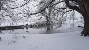 Campagna di Snowy fotografie stock libere da diritti