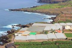 Campagna di Tenerife Fotografie Stock