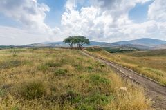Campagna e le montagne della Galilea nella valle di hula Fotografia Stock