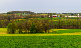 Campagna ed aziende agricole della Pensilvania in primavera vicino a Kutztown Campi che iniziano appena ad essere arato Immagini Stock Libere da Diritti