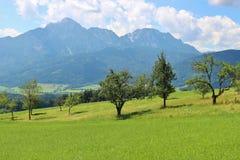 Campagna idilliaca in Baviera, Germania Fotografia Stock
