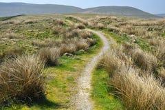 Campagna inglese: colline, erba, sentiero per pedoni, campo Immagine Stock
