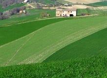Campagna italiana Fotografia Stock