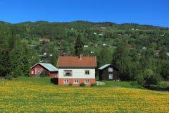 Campagna in Norvegia Fotografia Stock