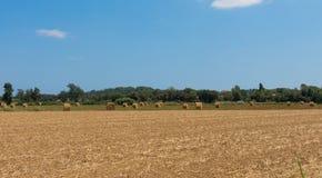 Campagna polacca, campi raccolti, mucchi di fieno Fotografia Stock