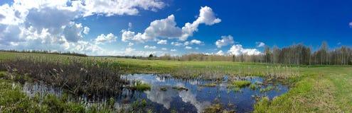 Campagna rurale di Latgalian Immagine Stock