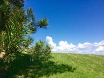 Campagna rurale di Latgalian Fotografia Stock Libera da Diritti