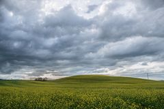 Campagna rurale Italia del percorso dell'architetto di giardini della Toscana verde blu fotografia stock libera da diritti
