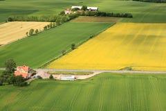 Campagna svedese Fotografia Stock