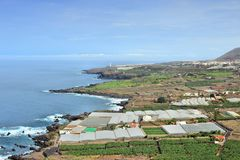 Campagna in Tenerife Fotografie Stock