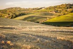 Campagna toscana al tramonto vicino a Montepulciano Fotografia Stock Libera da Diritti