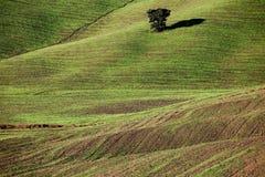 Campagna toscana, paesaggio italiano fotografie stock