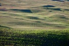 Campagna toscana, paesaggio italiano Fotografia Stock Libera da Diritti