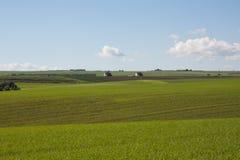 Campagna, un campo aperto, colline Immagini Stock