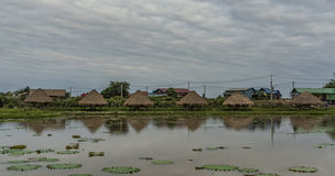 Campagna vicino alla città di Siem Reap fotografia stock