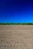 Campagne avec les arbres, la prise de masse et le ciel Images stock