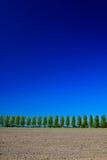 Campagne avec les arbres, la prise de masse et le ciel Image stock