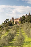 Campagne de la Toscane Photo libre de droits