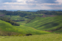 Campagne de la Toscane Photo stock