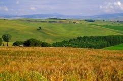 Campagne de la Toscane juin # 2 Image stock
