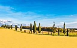 Campagne de Lucignano en Toscane Photographie stock