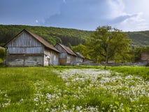 Campagne de Transylvanian au printemps photos libres de droits