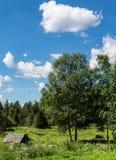 Campagne finlandaise Photos stock