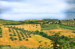 Campagne italienne pendant l'été Photographie stock libre de droits