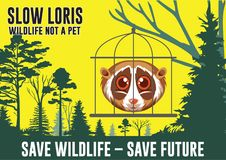 Campagne Poster, Slow Loris not a pet. Campagne Poster, Save wildlife - Save future, invites people not to buy or maintain slow loris, because slow loris is not Royalty Free Stock Photography