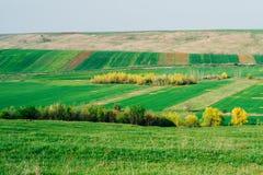 Campagne rurale Image libre de droits