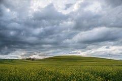 Campagne rurale Italie de chemin de paysagiste de la Toscane vert-bleu photo libre de droits