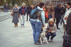 Campagne voor de bescherming van dieren Stock Foto