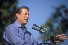 Campagnes de vice-président Al Gore Images libres de droits