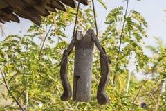 Campana di bambù Fotografia Stock