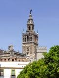 Campanario de la catedral de Sevilla (Giralda) foto de archivo libre de regalías