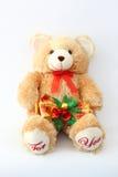 Campanas de Keith Brown Bear y de la Navidad Imagen de archivo libre de regalías