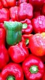 campane del peperone verde come fondo della verdura fresca Immagine Stock