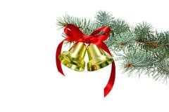 Campane di Natale dorate con il nastro rosso sui rami dell'abete bianco fotografie stock libere da diritti