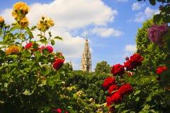 Campanile della cattedrale del ` s di St Stephen, Vienna immagine stock